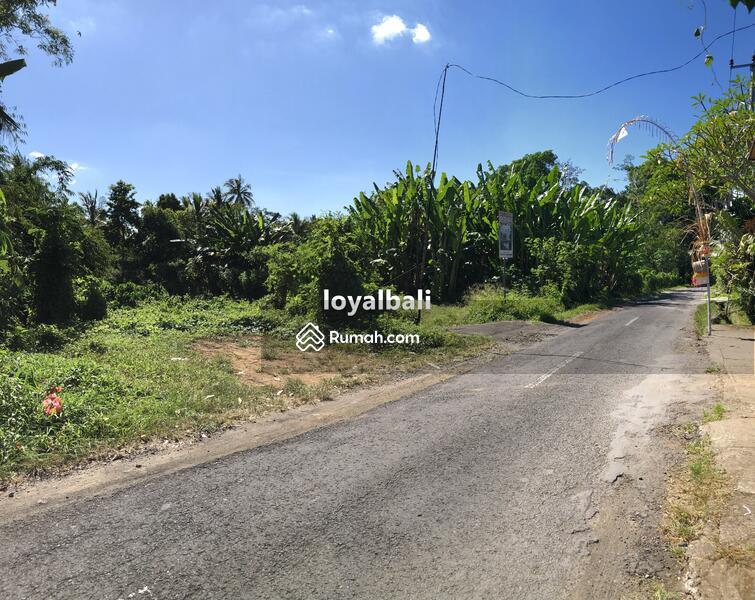 Loyal Bali Property #105199309