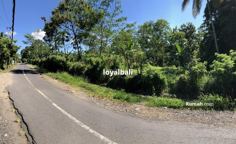 Loyal Bali Property #105199319