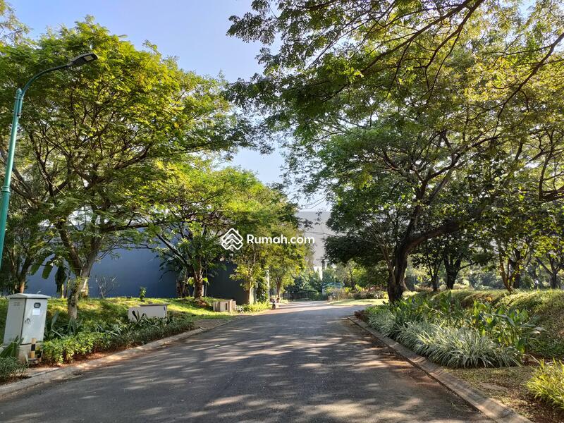 Royal Ochard Langka Jalan Utama Nego Sampe Deal!!! #105200377