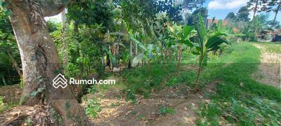 Dijual - Tanah view pangkung, sawah di ubud