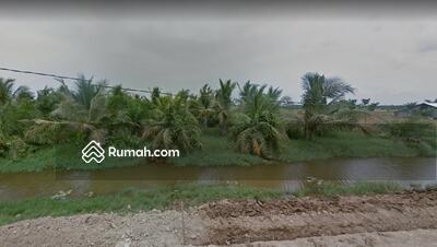 Dijual - Dijual Cepat Tanah Sawah Besar Murah Produktif Pertanian 1, 6 Hektar