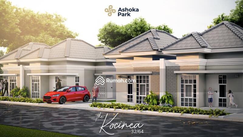 Ashoka park #106422539