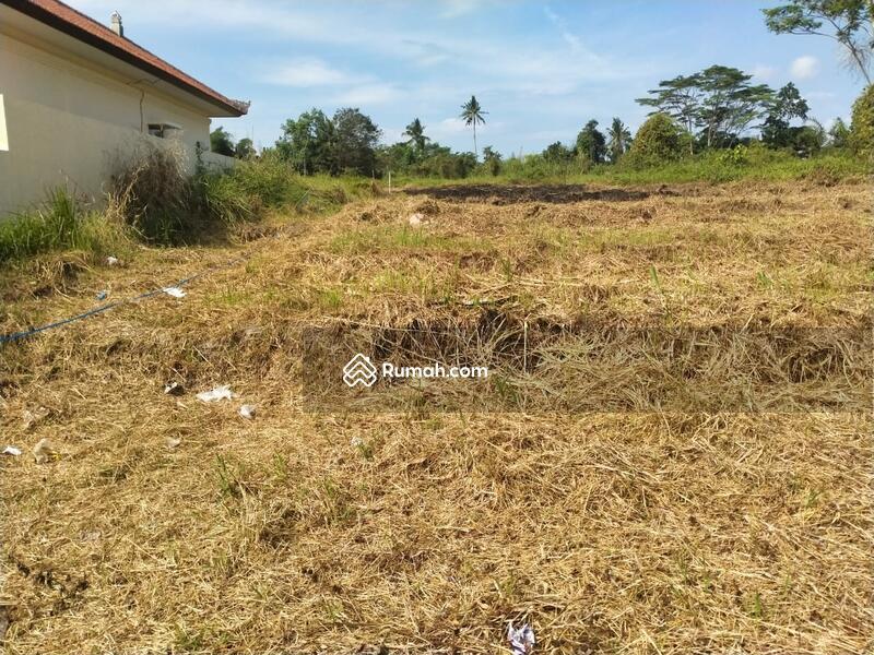 Tanah strategis pinggir jalan area lodtunduh, UBUD #106543447