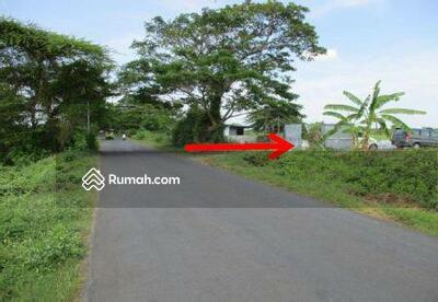 Dijual - Tambak dan Tanah Luas Besar di Raya Ujungpangkah SIdayu Gresik