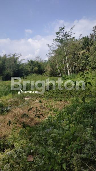 Tanah Dekat Candi Borobudur Tuksongo Magelang #108821763
