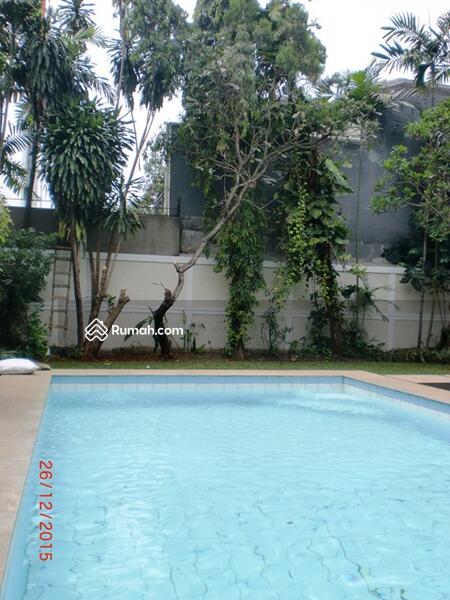 rumah minimalis dengan kebun dan kolam renang di kemang